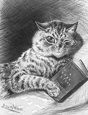 Cat_reading_A_Love_Story